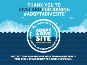 PADI 5 Star Dive Resort | Los Cabos