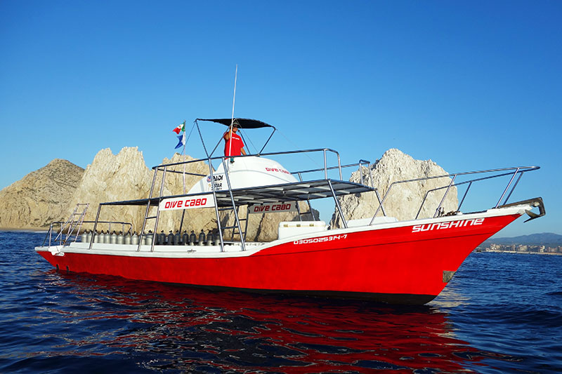 best dive boat in los cabos